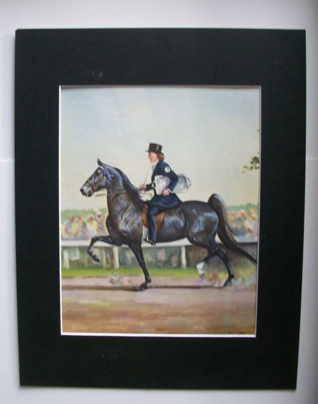American Saddle Horse Print Wesley Dennis Marguerite Henry Bookplate 1951 Matted