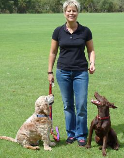 Paws Pet Care - Making their day while you're away