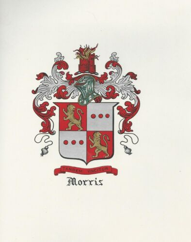 Great Coat of Arms Morris Crest genealogy, would look great framed!