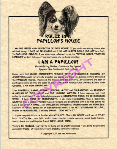 Rules In A Papillon