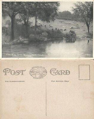 Pa Farm (CANADENSIS PA FARM OF SPRUCE MOUNTAIN HOUISE ANTIQUE POSTCARD)