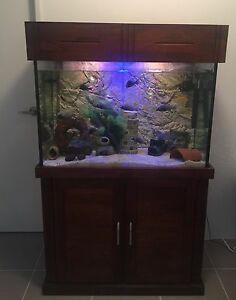 as new 3ft complete fish tank setup Canning Vale Canning Area Preview