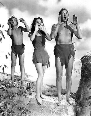classic Tarzan All Episodes On 4 DVDs Public Domain DVD