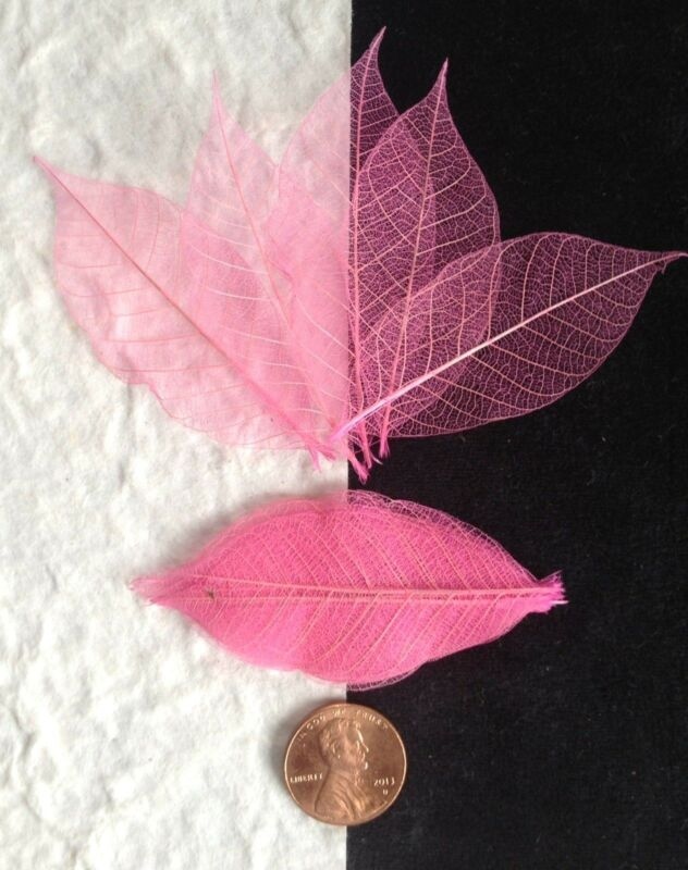 25 Skeleton Leaves Pink Small leaf soapmaking cards candle Valentines Crafts