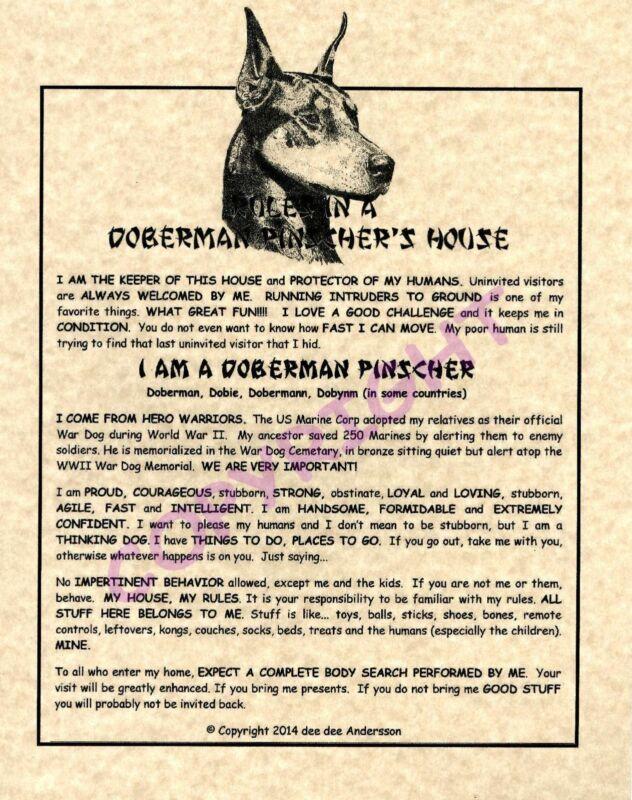 Rules In A Doberman Pinscher