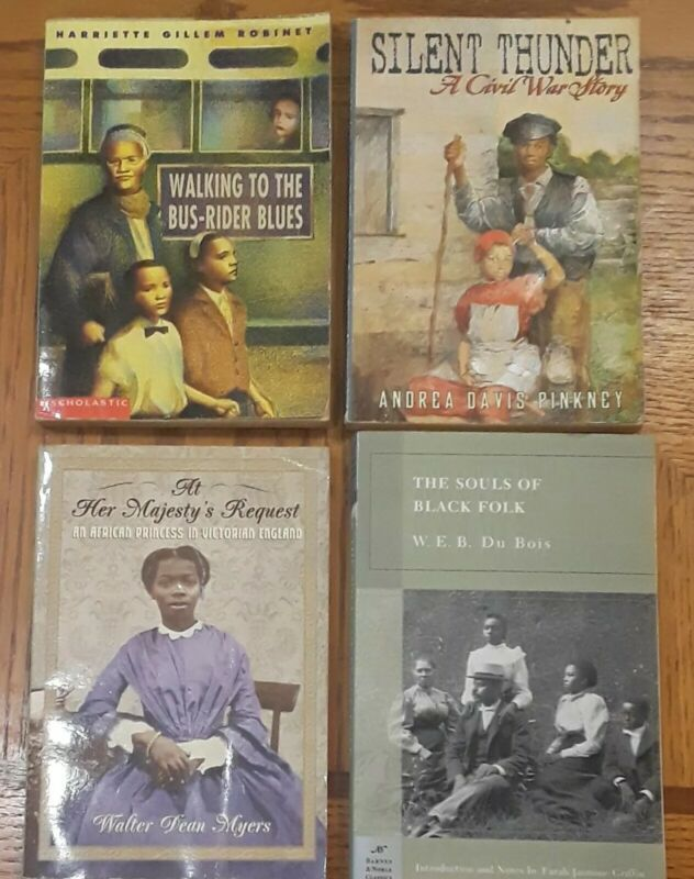 Lot of 4 Books Black Negro History/Culture, Silent Thunder, Souls of Black Folks