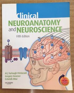 Through ebook cases neuroanatomy clinical