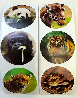 25 Zoo Jungle Animals Stickers Party Favors Teacher Supply Tiger Panda Giraffe (Jungle Parties)