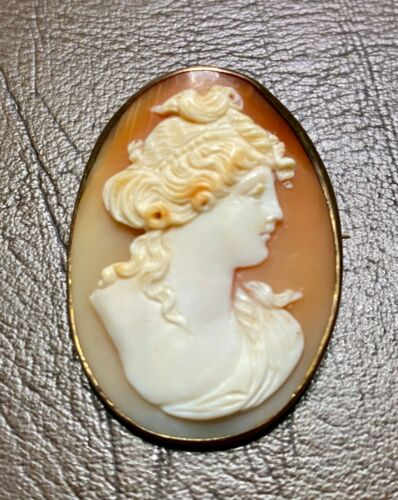 WONDERFUL VICTORIAN CARVED SHELL CAMEO SET IN A 10K YELLOW GOLD BROOCH