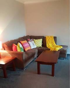 Room for Rent Albany Albany Area Preview