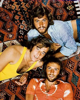 """Bee Gees 10"""" x 8"""" Photograph no 28"""