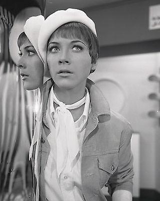 "Linda Thorson Avengers 10"" x 8"" Photograph no 14"