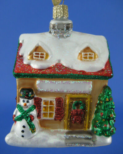 Merck Old World Christmas Ornament Home for Holiday House Glass