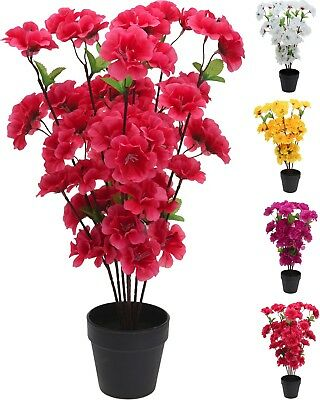 Lovely Realistic Artificial Plants Fake Flowers Orchids Or Azaleas Office  Home