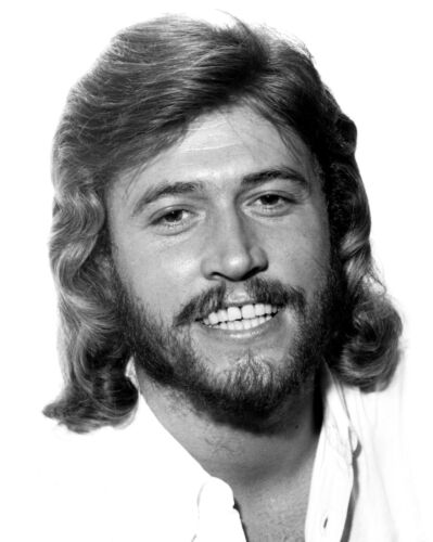THE BEE GEES - MUSIC PHOTO #E-86
