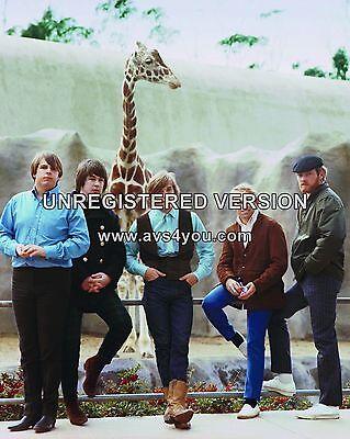 """Beach Boys 10"""" x 8"""" Photograph no 80"""