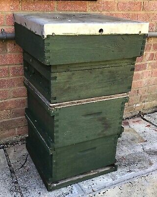 Used British National Bee Hive (now in green preservative)