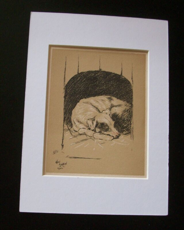 Dog Cecil Aldin Bookplate Print 1902 Sleeping In Doghouse Matted Terrier? Mutt