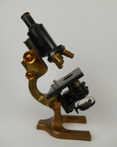 Vintage Spencer Brass Microscope With Understage Condenser Buffalo