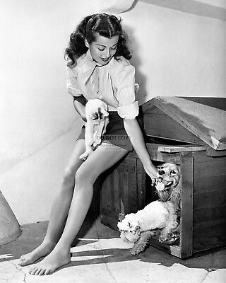 ACTRESS GAIL RUSSELL WITH ANIMAL FRIENDS - 8X10 PUBLICITY PHOTO (CC-186) for sale  Cordova