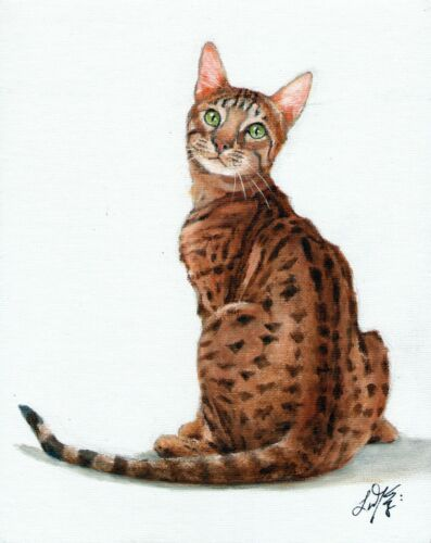 Original Oil Cat Portrait Painting BENGAL BROWN SPOTTED TABBY Artist Signed Art