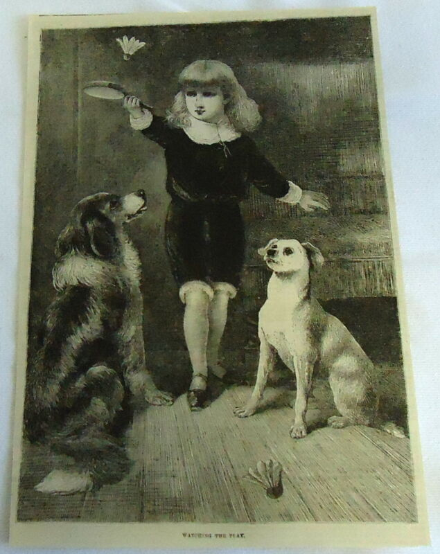 1882 magazine engraving ~ DOGS WATCHING LITTLE BOY PLAY BADMINTON