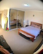 Big room for rent in Cronulla Cronulla Sutherland Area Preview