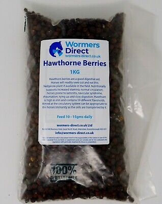 HAWTHORN BERRIES 1KG HORSE EQUINE HERB FEED SUPPLEMENT WORMERS-DIRECT