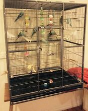 Large cage + lots of accessories. Rowville Knox Area Preview
