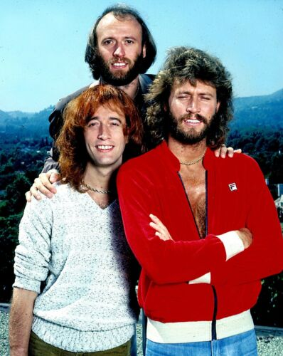 THE BEE GEES - MUSIC PHOTO #E-33