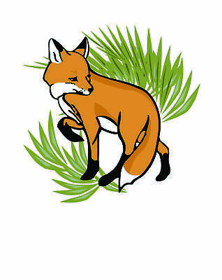 The Fox Project/Southern Wildlife Ambulance Network