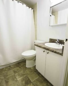 Stunning 2 Bedroom Apartment for rent, UTIL INCL!