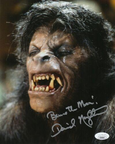 David Naughton Autograph Signed 8x10 Photo- American Werewolf in London(JSA COA)