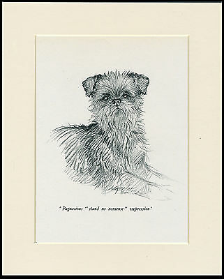 BRUSSELLS GRIFFON LOVELY VINTAGE 1930'S DOG ART PRINT by KF BARKER READY MOUNTED