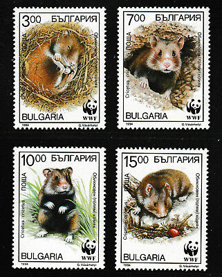 Used, WWF Hamsters set of 4 stamps mnh 1994 Bulgaria #3831-4 for sale  Shipping to India