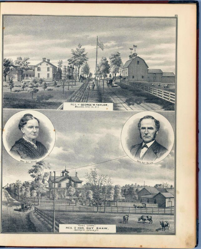 1876 atlas TATES COUNTY NEW YORK maps old GENEALOGY LAND OWNER plats DVD P35