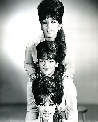 """The Ronettes 10"""" x 8"""" Photograph no 6"""