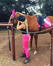 $2000 Beautiful chestnut mare for sale Craigieburn Hume Area Preview