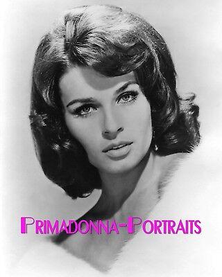 SENTA BERGER 8x10 Lab Photo 1960s High Fashion Dark Haired Beauty Portrait