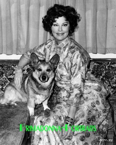 AVA GARDNER 8x10 Photo Lab 1970s Corgi Puppy Dog Older Elegance Portrait