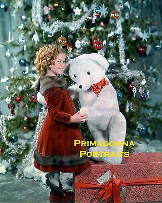 SHIRLEY TEMPLE 8X10 Lab Photo COLOR AMAZING Christmas Tree & Teddy Bear Portrait