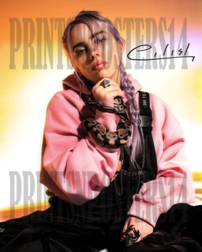 Billie Eilish singer 11x14 SIGNED REPRINT Photo/poster Dark POP #2