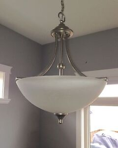 Hanging light fixture - new price