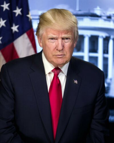 DONALD J. TRUMP 45TH PRESIDENT OF THE UNITED STATES - 8X10 PHOTO (ZY-736)