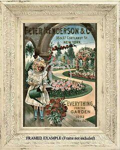1902 Peter Henderson Garden Catalog Cover Roses Victorian
