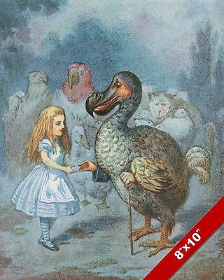 Alice In Wonderland   The Dodo Bird Lewis Carrol Canvas Painting Art Print