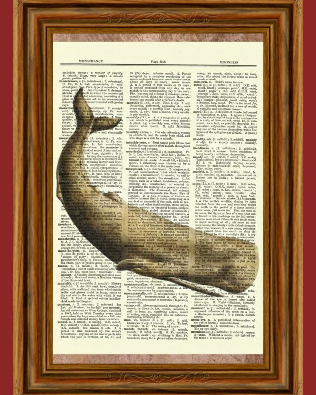 Whale Dictionary Art Print Picture Book Nautical Ocean Sperm Water Reef Poster