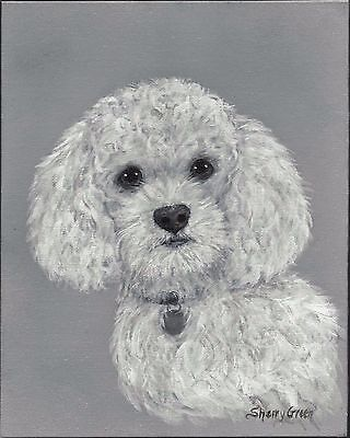 Poodle Dog with name tag, original acrylic puppy pet painting 8x10 canvas panel