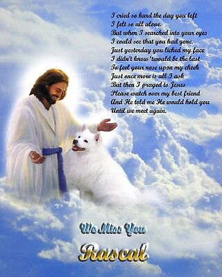 American Eskimo Memorial Picture-w/Jesus/Poem Personalized w/Dog's Name-Pet-Loss
