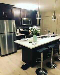 LUXURY CONDO (roommate wanted)